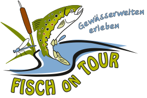 Fisch on Tour